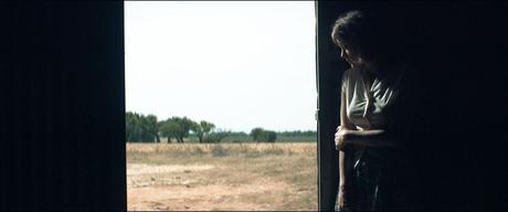 Mal de pierres - Marion Cotillard