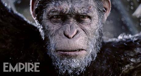 Nouvelle image officielle pour La Planète des Singes : Suprématie de Matt Reeves