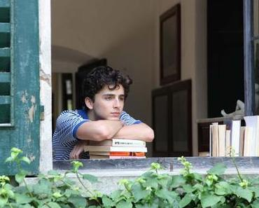 Vers une suite pour Call Me By Your Name de Luca Guadagnino ?