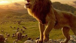 Nouvelles affiches chinoises pour Lion Favreau